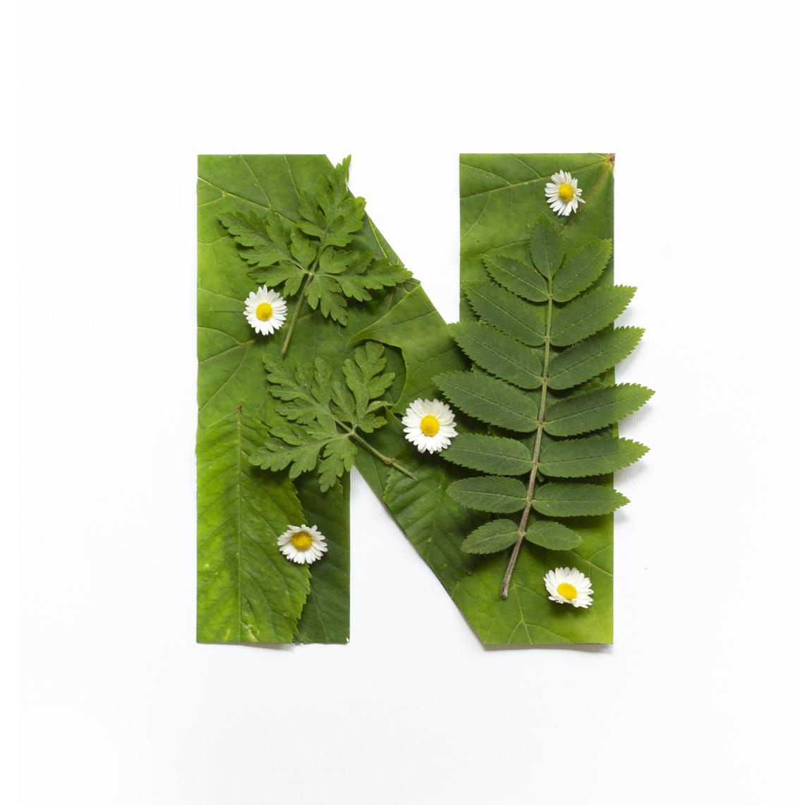 Naturen – ett skafferi av pysselmaterial