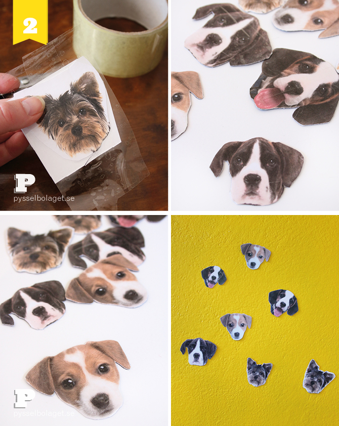 Sweet magnets PB 2014 4