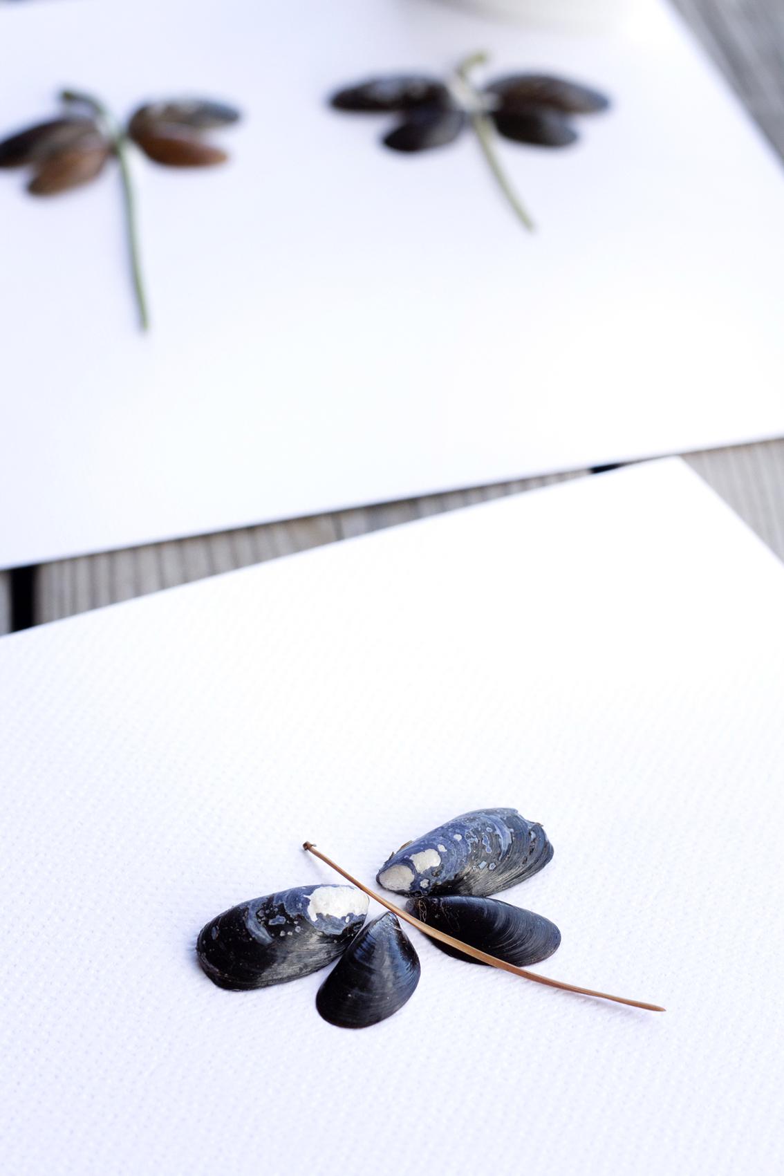 Konst av snäckor | Pysselbolaget