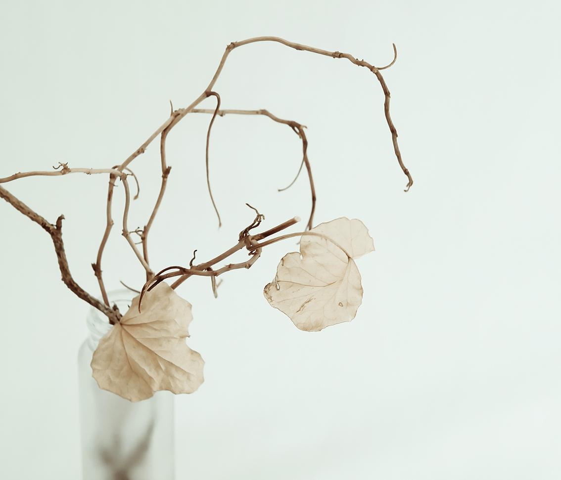 Målade grenar | Pysselbolaget
